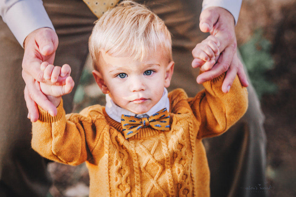 Baby Boy in daddy hands in a yellow sweater and cute bow tie- A portrait By Nature's Reward Photography!