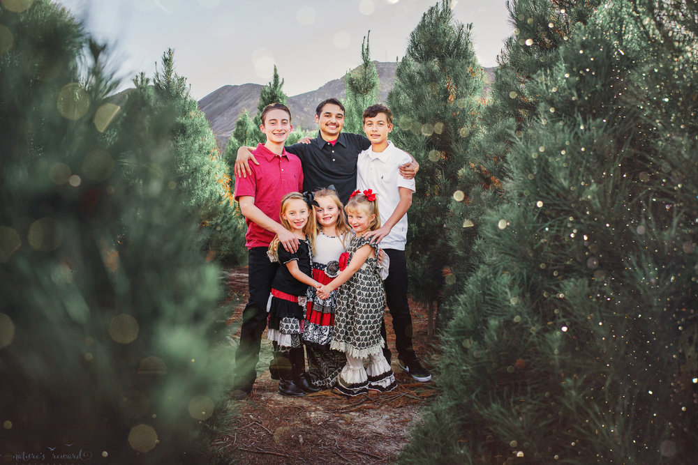 Triplet girls and their 3 big brothers at a Christmas tree farm- A Portrait by Nature's Reward Photography