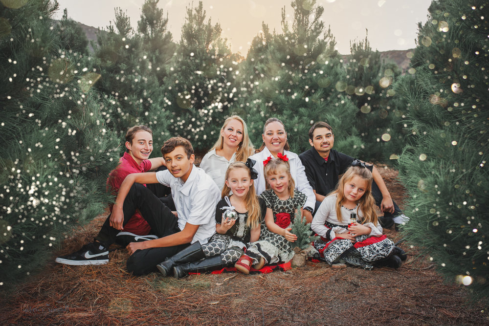 A gorgeous family including 6 amazing children at a Christmas tree farm- A Portrait by Nature's Reward Photography