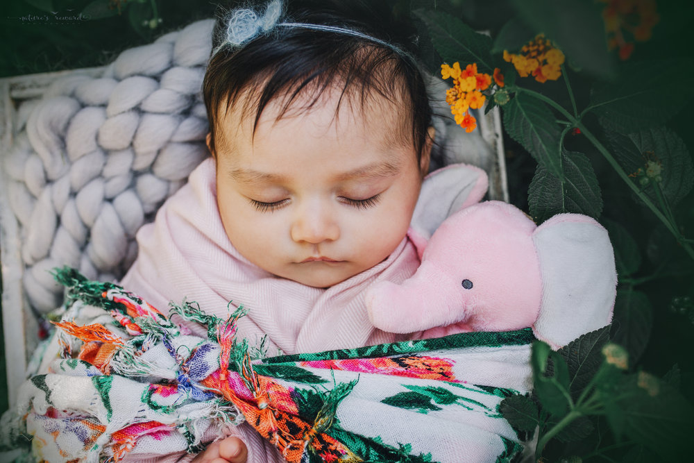 Lovely 10 week old newborn baby girl swaddled in pink, with a pop of color and here stuffed babies- a portrait by Nature's Reward Photography