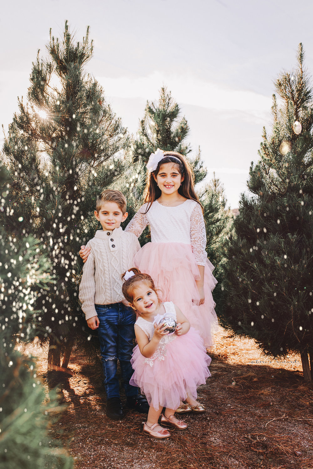 A sibling portrait with Big Sister, Big Brother and little sister -A Christmas tree farm portrait by Nature's Reward Photography