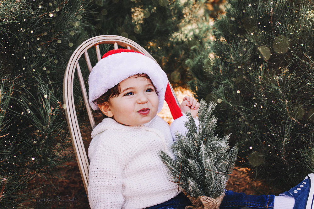 Baby Boy in a sonata hat A Christmas tree farm portrait by Nature's Reward Photography