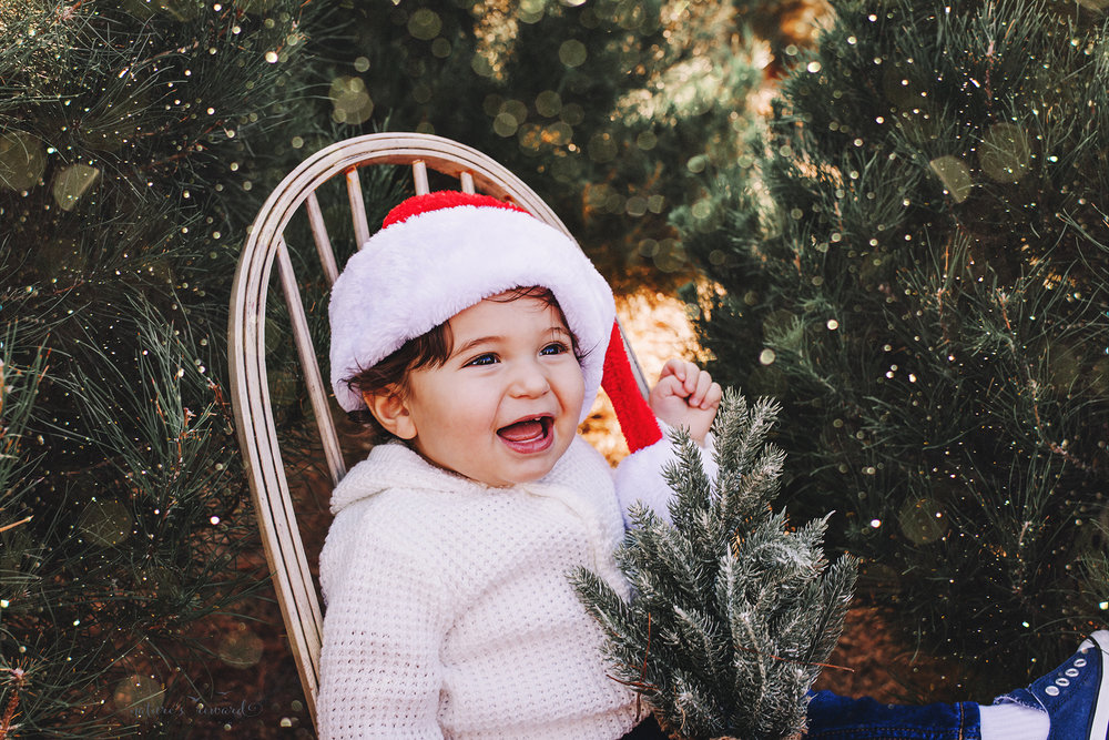 Baby boy in a Santa hat- A Christmas tree farm portrait by Nature's Reward Photography
