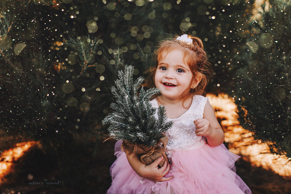 Sweet toddler little girl- A Christmas tree farm portrait by Nature's Reward Photography