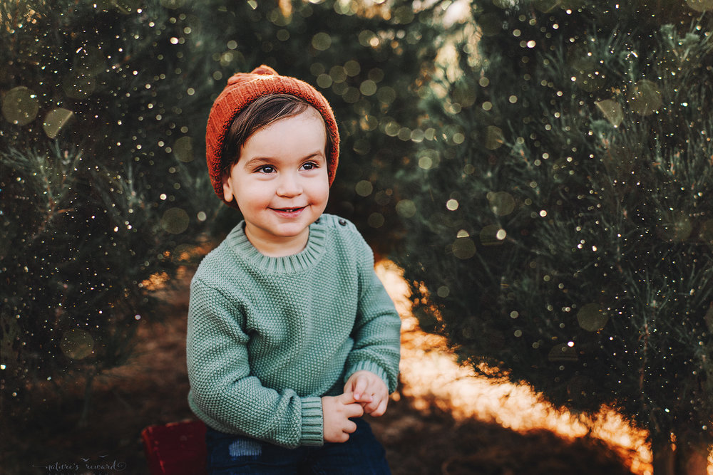 So darling, this little boy - A Christmas tree farm portrait by Nature's Reward Photography