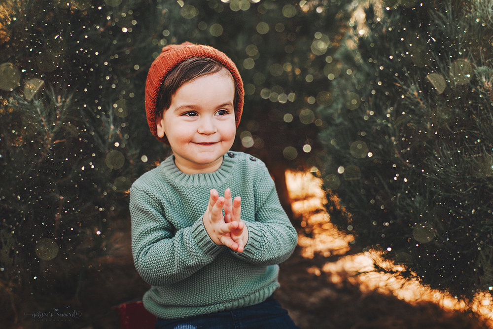 Baby boy - A Christmas tree farm portrait by Nature's Reward Photography