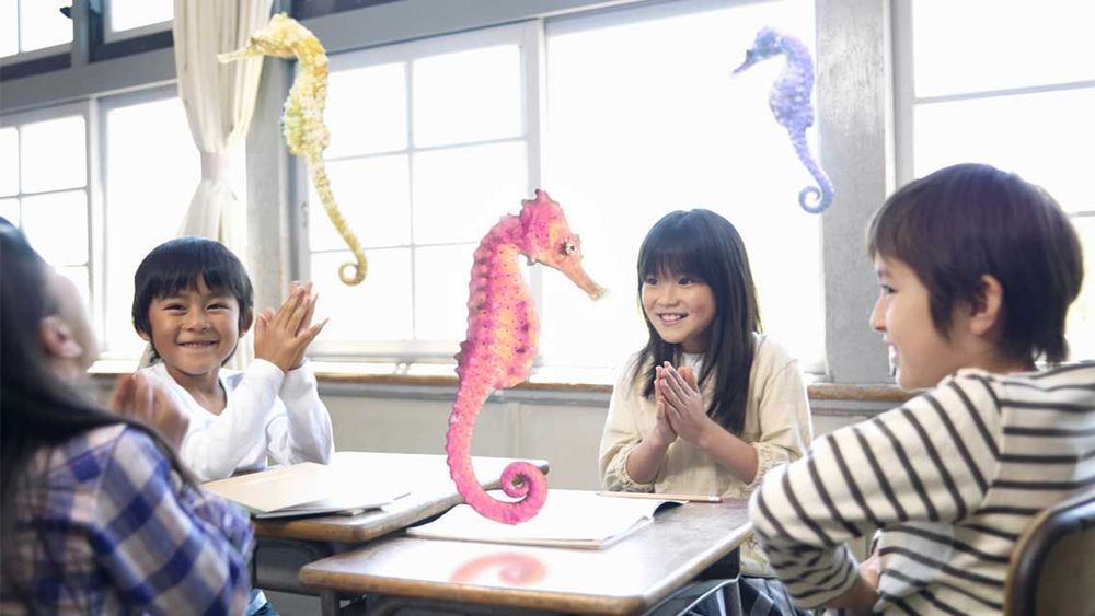 Magic Leap Seahorses