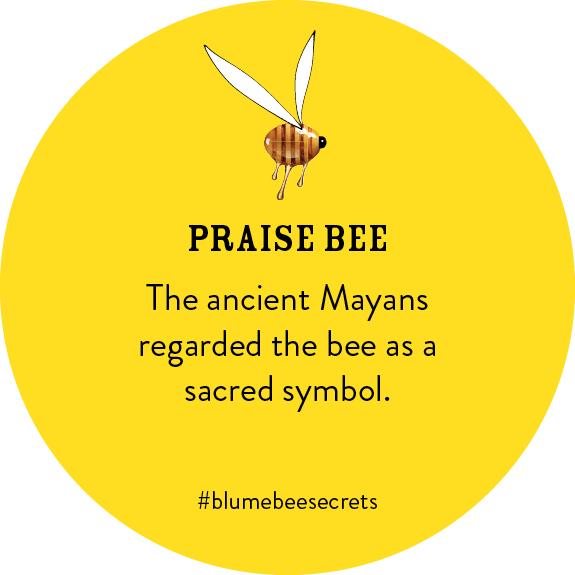 BEESECRETS-praisebee-FRAMEB.jpg