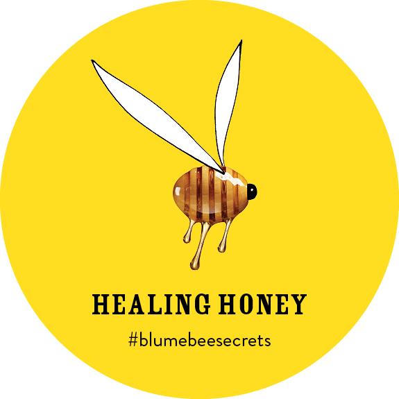 BEESECRETS-healinghoney-FRAMEA.jpg