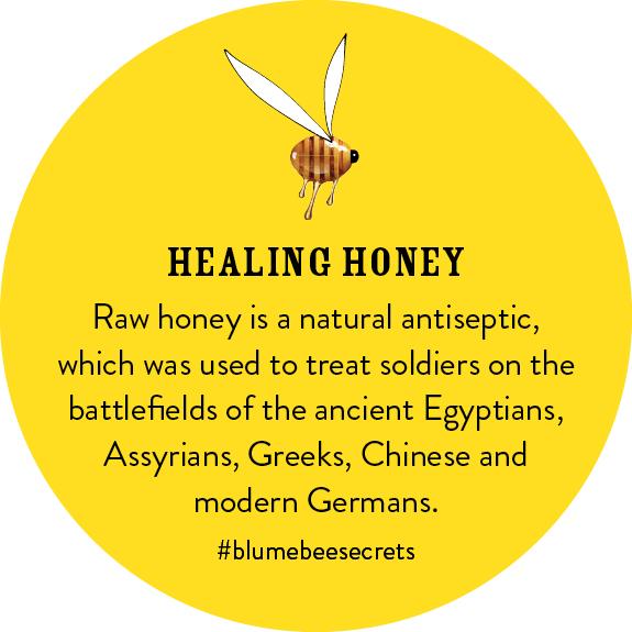 BEESECRETS-healinghoney-FRAMEB.jpg