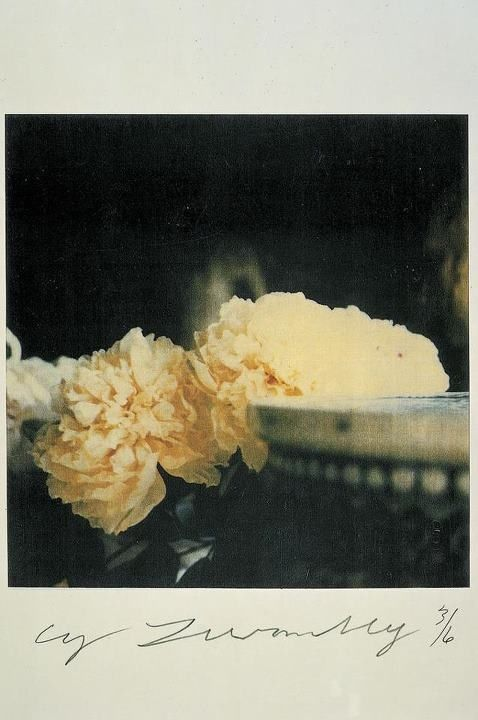 Peonies, Cy Twombly, 1980