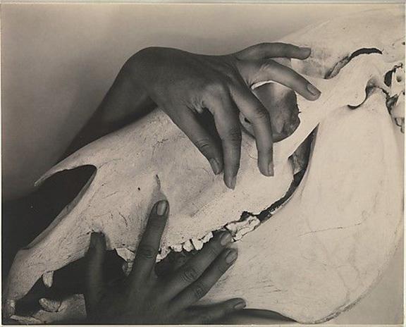 Georgia O'Keeffe Hands on Horse Skull, Alfred Stieglitz, 1931