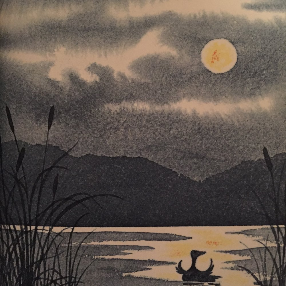 Squawk to the Moon Little Goose, Edna Mitchell Preston, 1974
