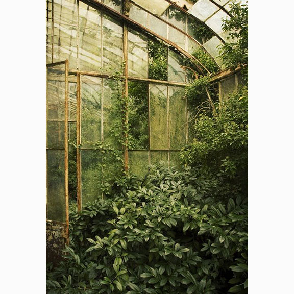 Martino, Chateau R Green House, 2008