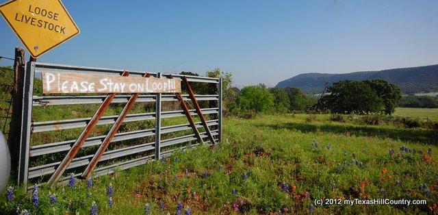 willowcityloopapril2012 9.jpg