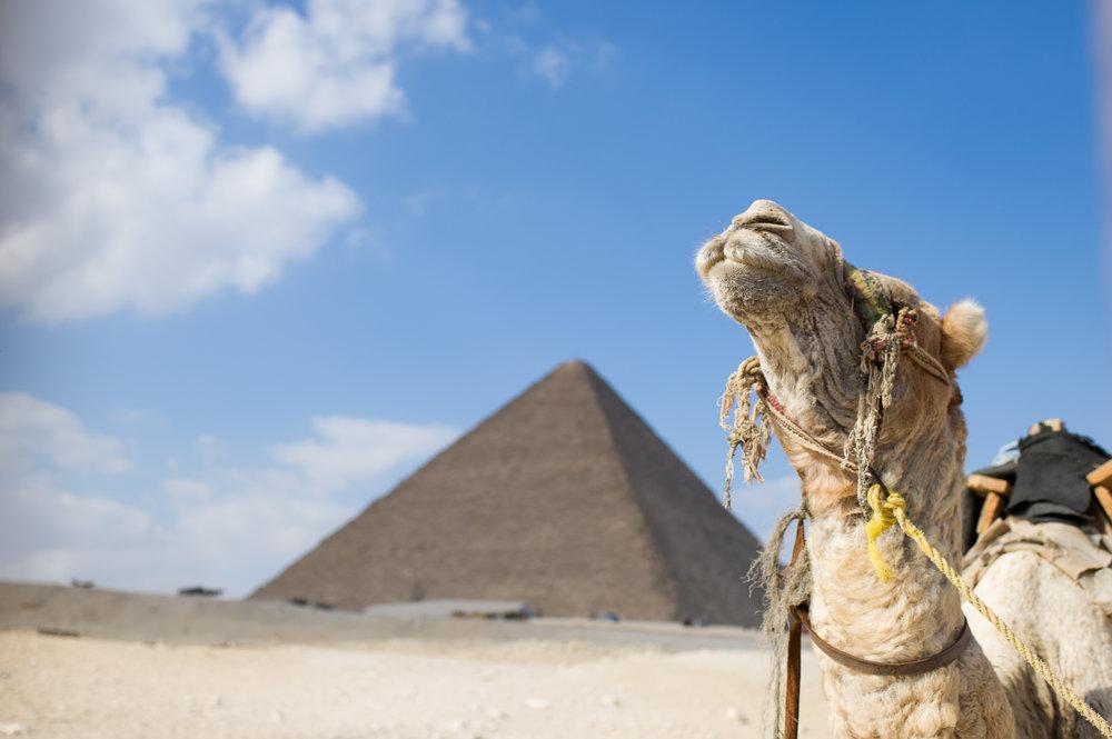 032_Egypt_Cairo_01062018_9587.jpg