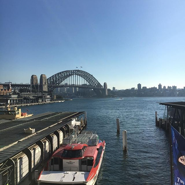 Oh Sydney, you do put on a good show 😘 #bridge #harbour #beautifulday