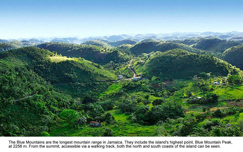 jamaica-blue-mountains.jpg