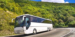 Sonic Bus Tours