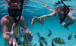 Snorleling-in-St-Maarten-sm.jpg