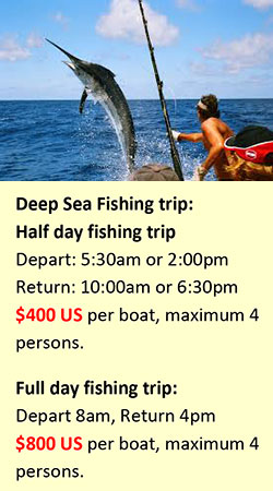 Half day fishing trip:  Depart: 5.30AM or 2PM Return: 10am or 6.30pm  $400 US  per boat, maximum 4 people   Full day fishing trip:  Depart: 8AM Return: 4PM  $800 US  per boat, maximum 4 people.