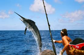 Deep Sea Fishing-4.jpg