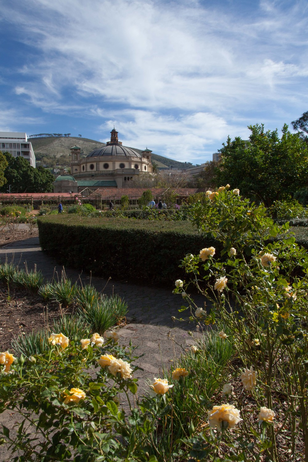 The Company's Gardens, Cape Town
