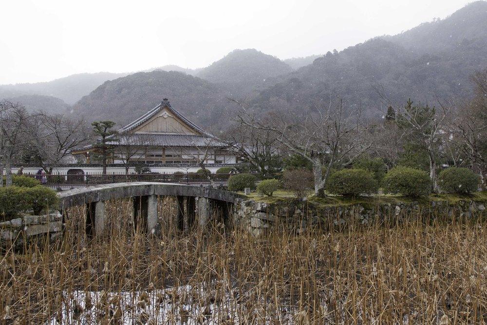 Snow begins to fall at  Tenryū-ji Temple
