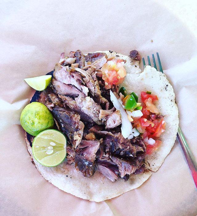 Taco Everyday!