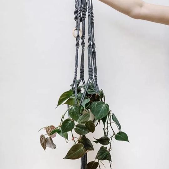 A gorgeous handmade macrame hanger