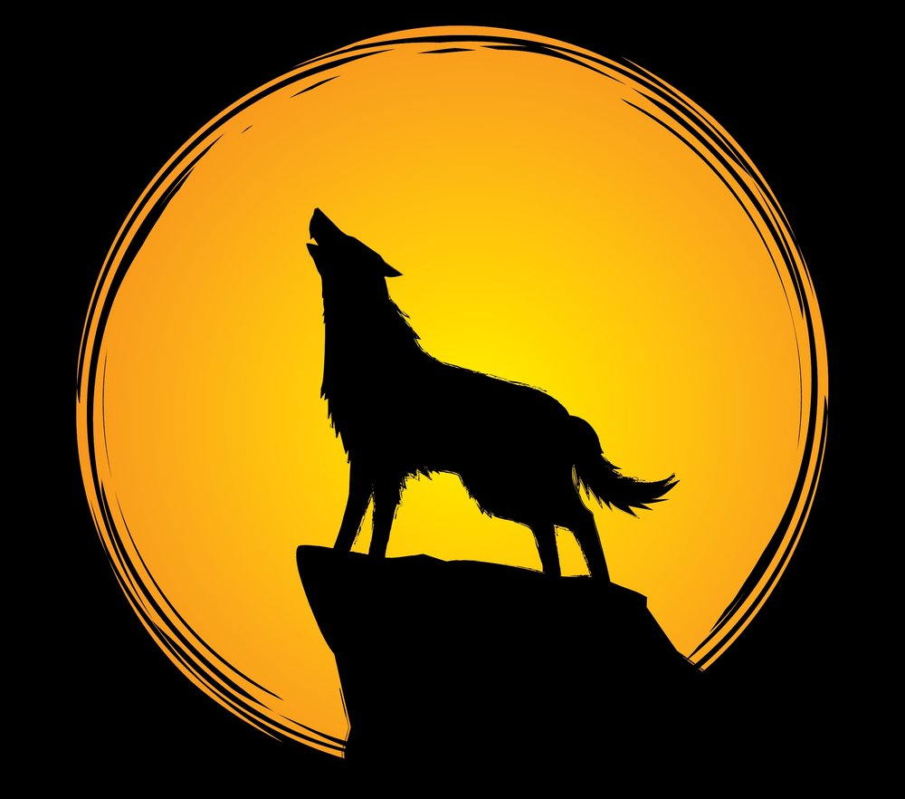 Howling at the Moon -