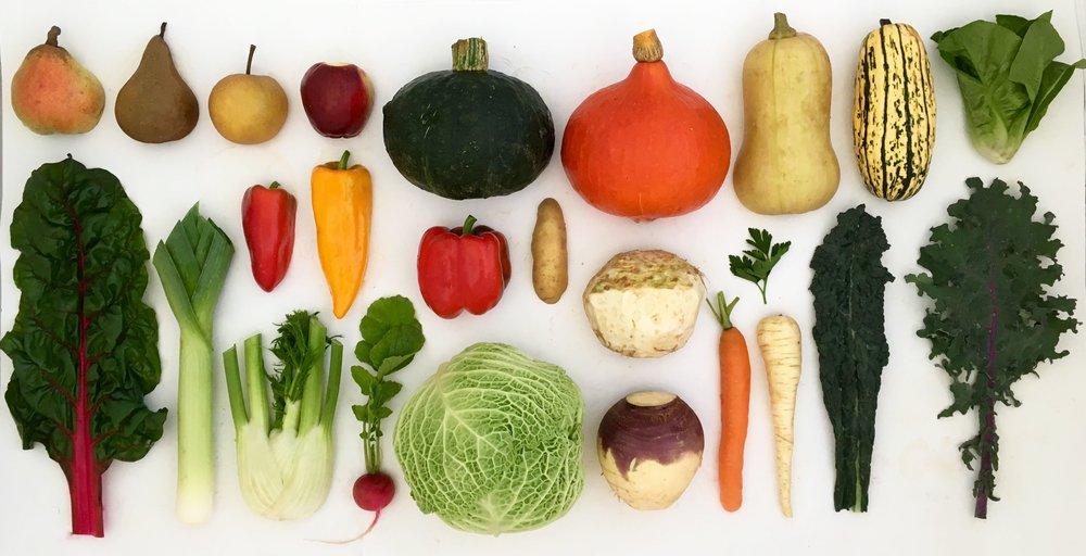 HELSING JUNCTION FARMS