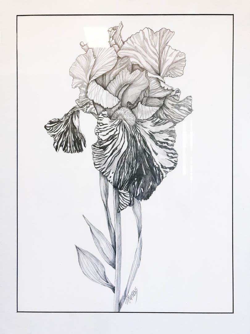 birdsbeesblooms-114.jpg