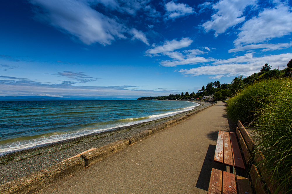 The Beach at Qualicum 3_sized.jpg