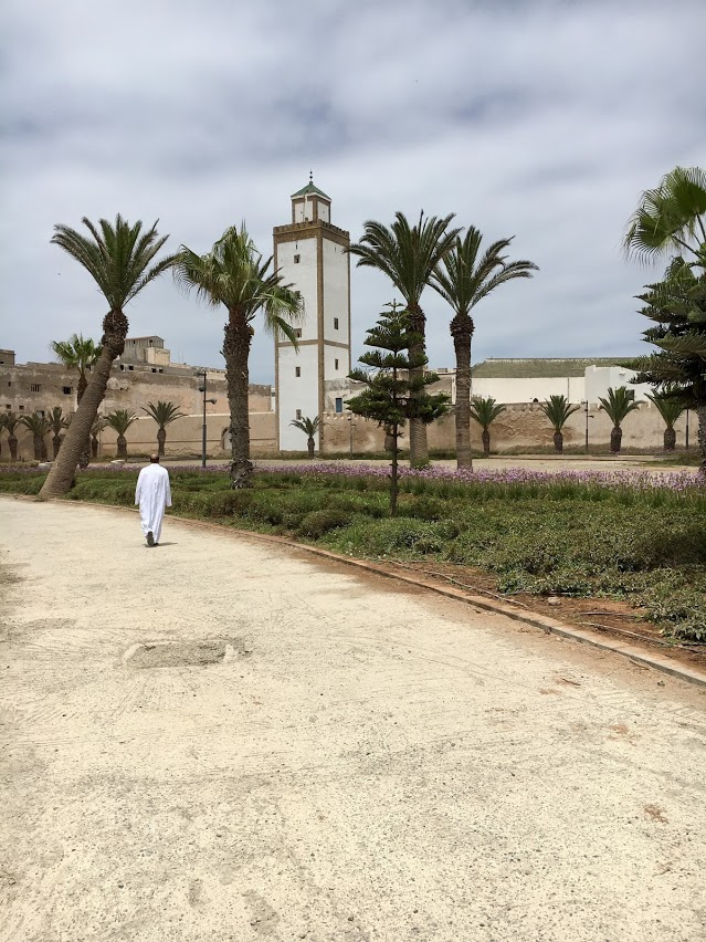 Essaouira_Jardin.JPG