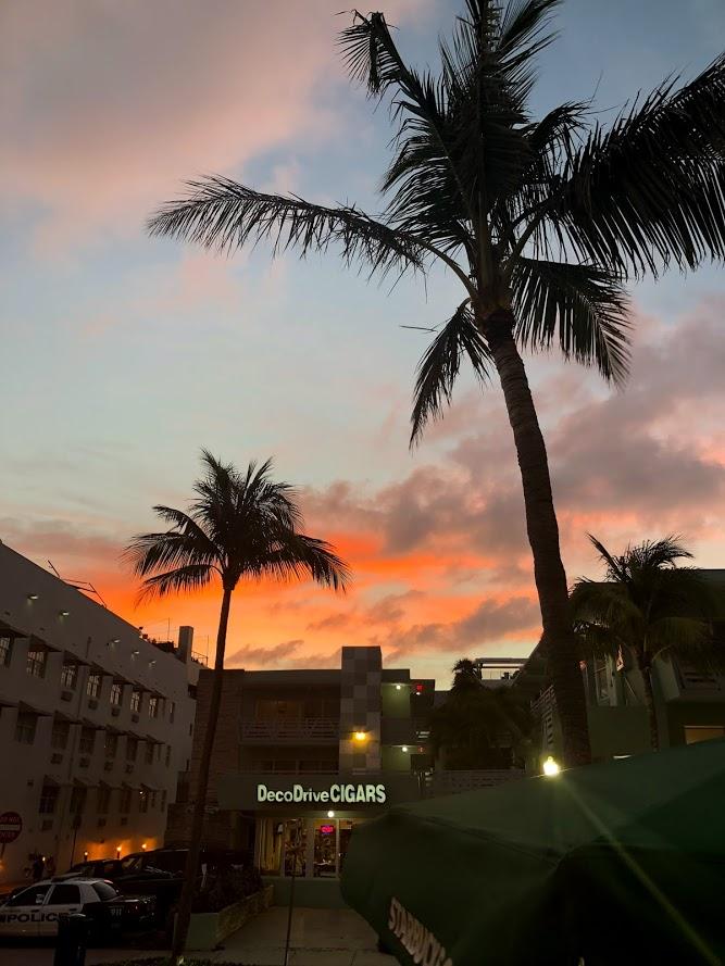 Miami_Play07.jpg