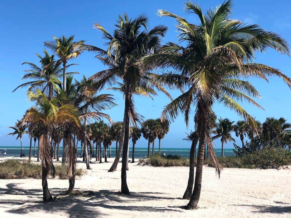 Miami_PLay14.jpg
