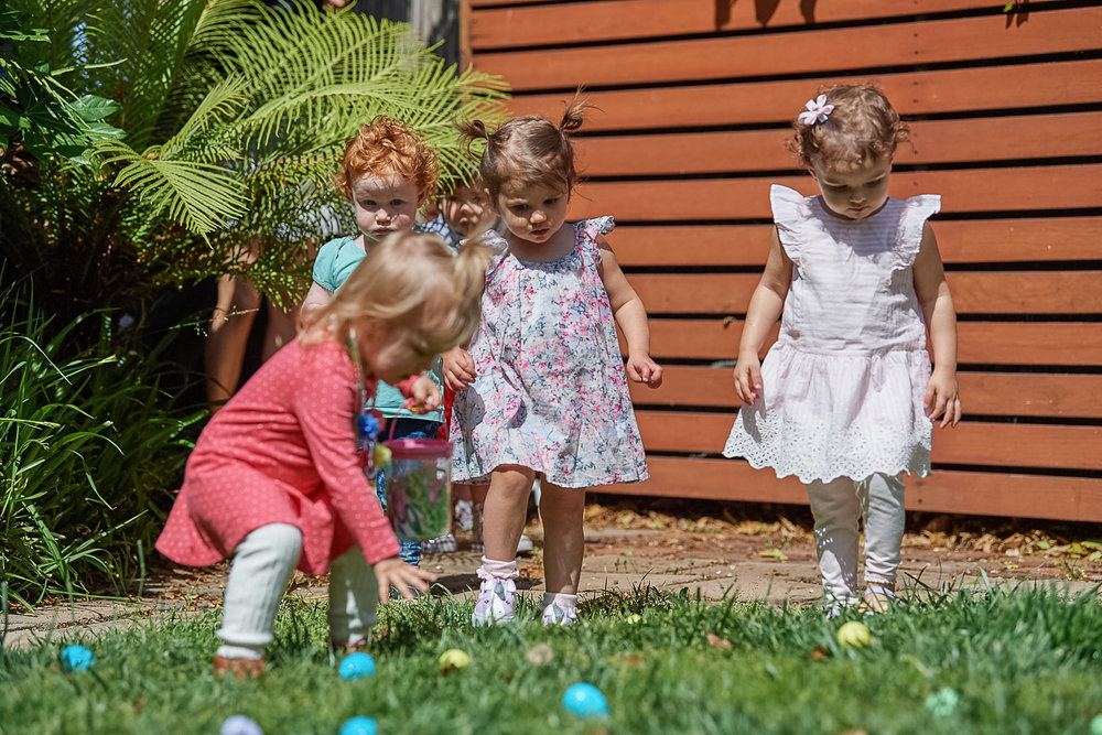 the easter egg hunt begins