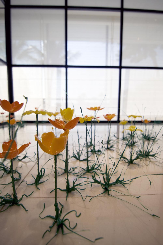 poppyculture3.jpg