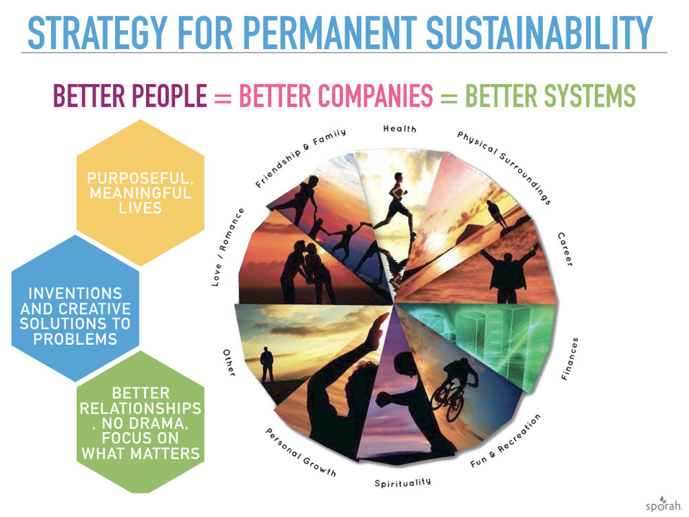 StrategyForSustainability