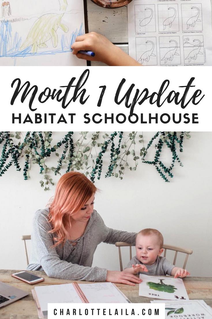 Month one update Habitat schoolhouse