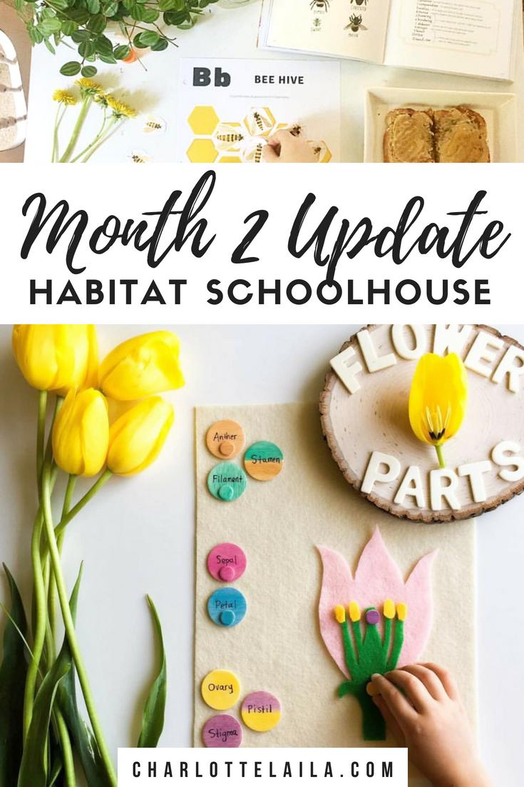 Month two update Habitat schoolhouse
