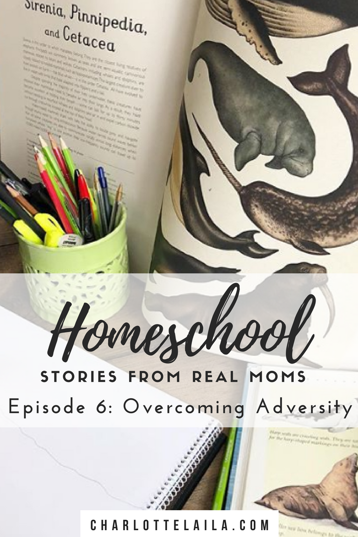 These posts are to encourage you along your homeschooling journey, share experiences and connect with other homeschooling moms all over the world.   This week's homeschooling story is from Ruthie. Read below to hear her story about how she's learning to teach both of her boys who have two completely different learning styles and find freedom in being able to teach them from home.