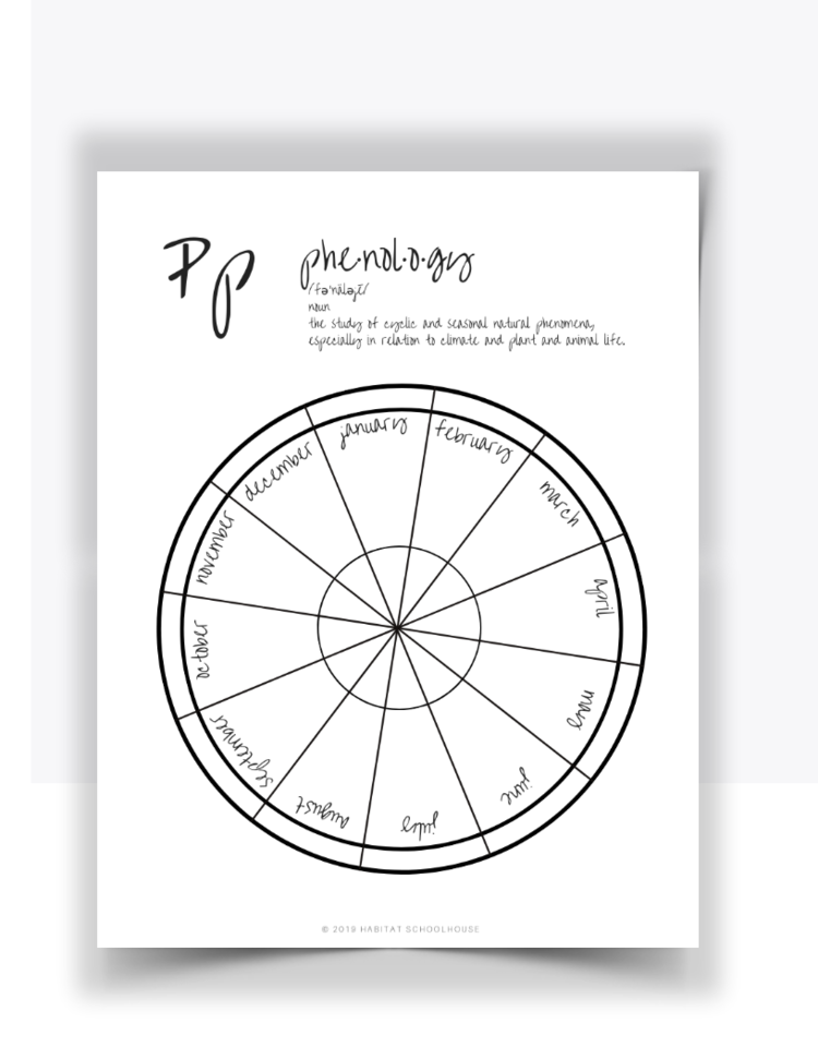 Curriculum+Cover+Pages+(29).png