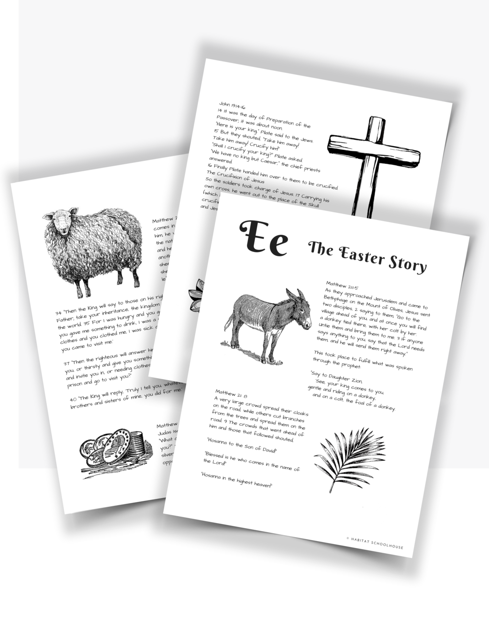 Curriculum Cover Pages (100).png