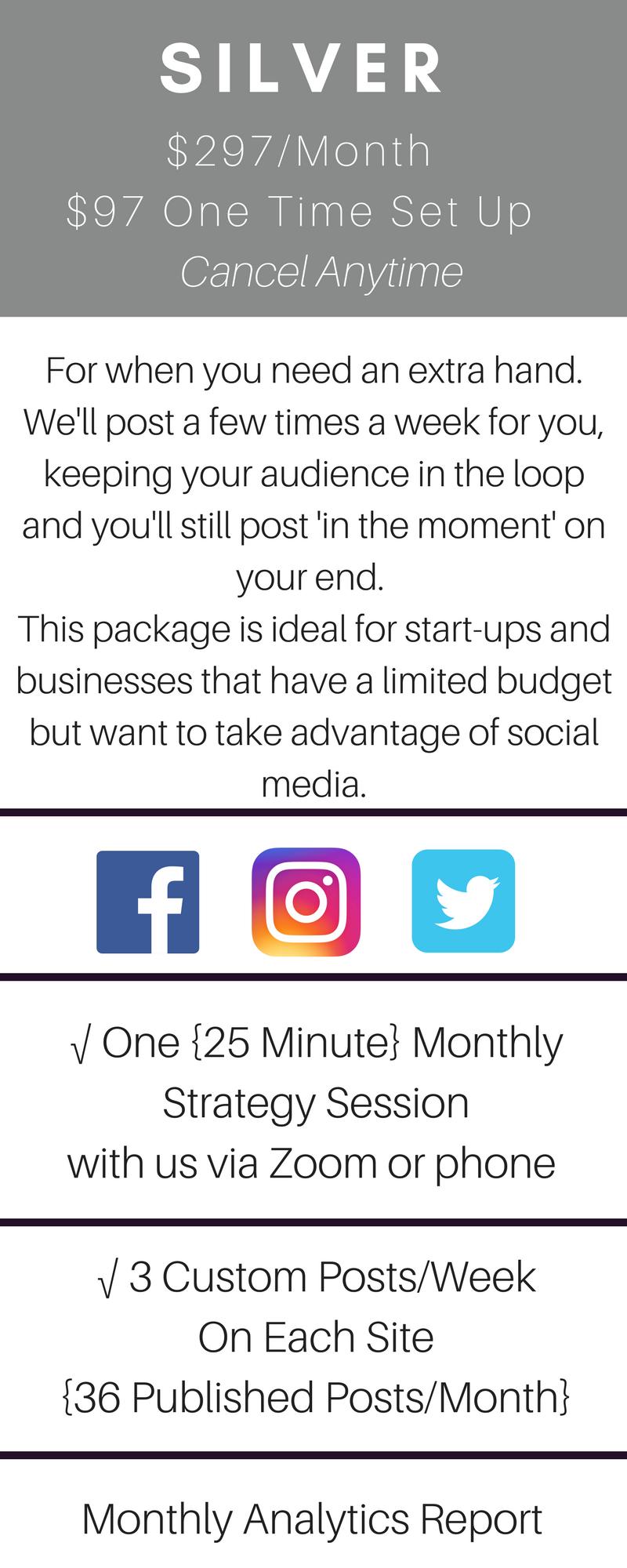 silver social media marketing package - perfectwavemarketing.com.png