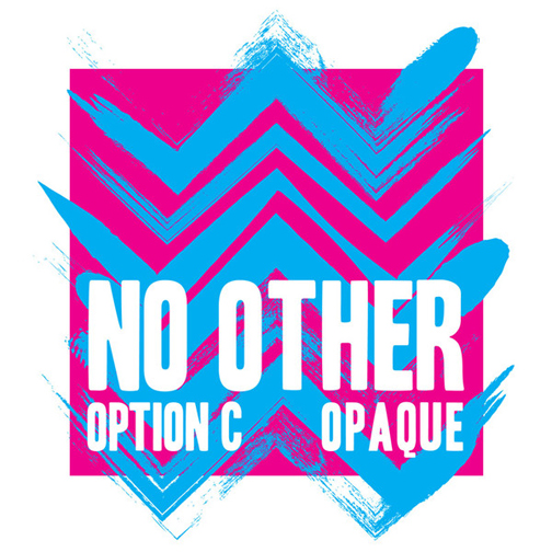 No Other - Option C (Negative Fun Records)   Engineer, Mixer