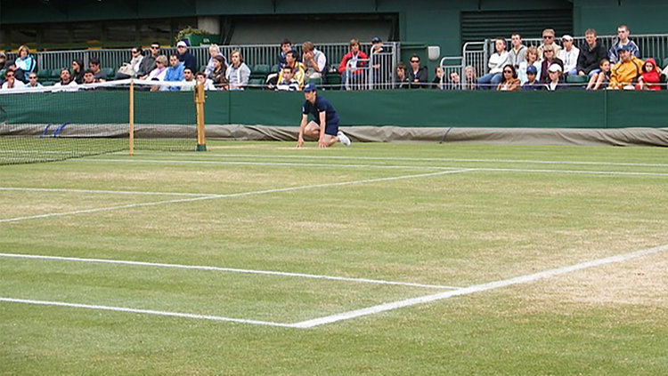GRASS TENNIS COURT 30FIFTEEN