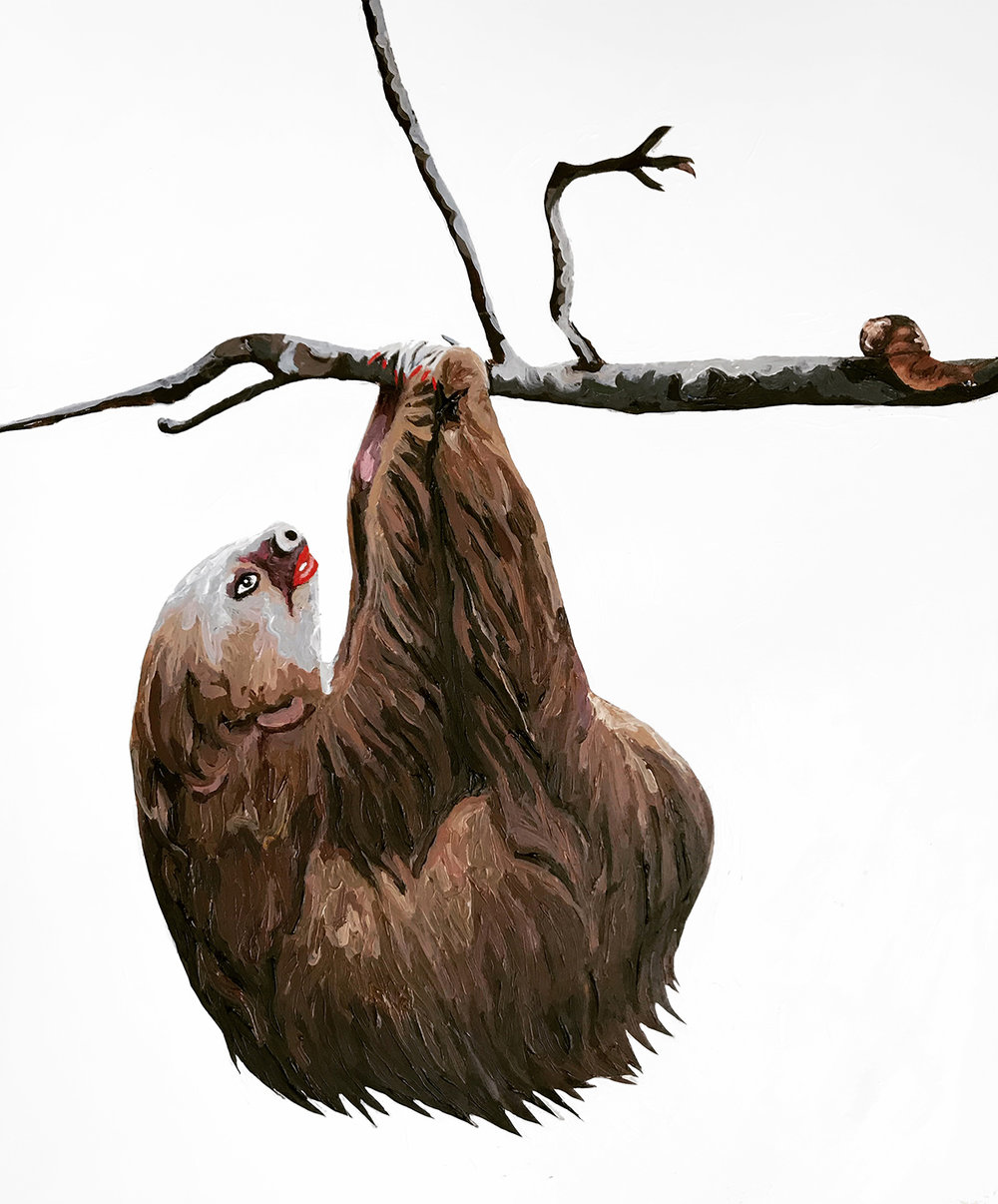 sloth copy.jpg