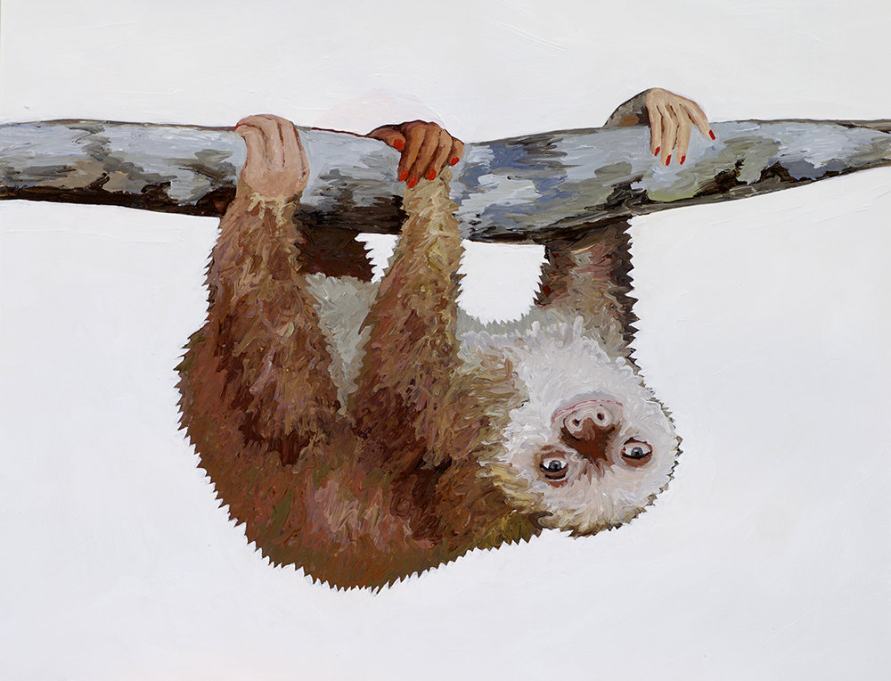 sloth-web.jpg